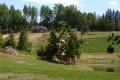 Veemäe suvi 2009